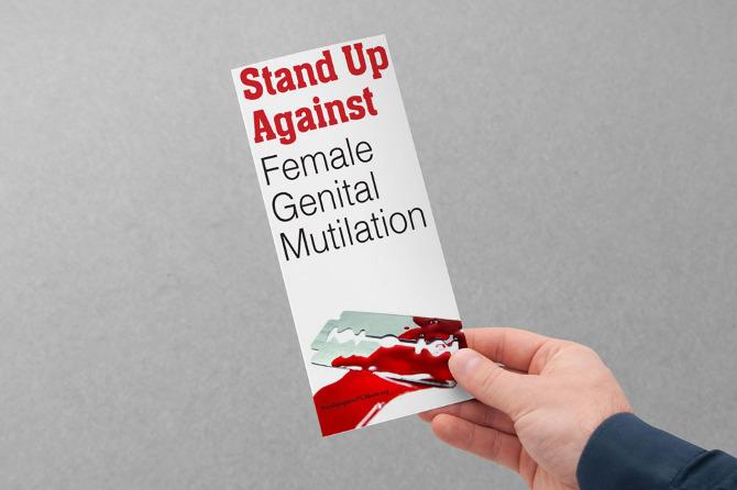 FGM 3